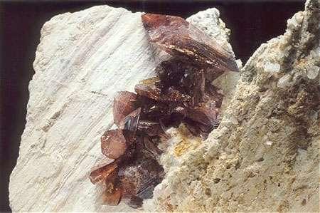 Ferro-axinite - La Balme d'Auris, Auris en Oisans, Isère - Collection D.Boël - Reproduction et utilisation interdites © Photo : Louis-Dominique Bayle - Revue Règne Minéral