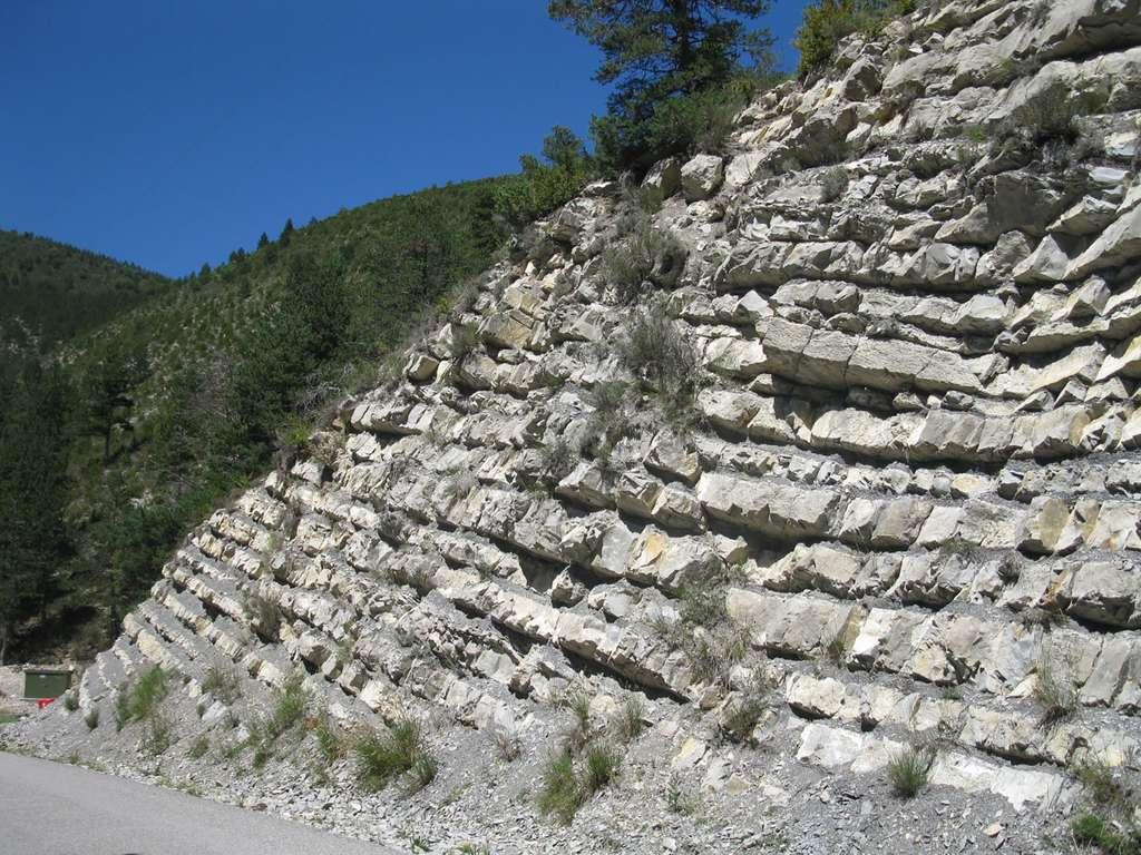 Stratotype du Barremien à Angles (Alpes-de-Haute-Provence). © Spiridon Ion Cepleanu, Wikimedia commons, 4.0