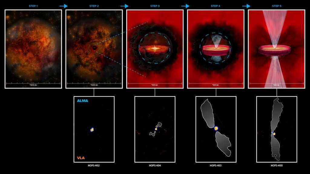 Ce schéma montre une voie proposée (rangée du haut) pour la formation des proto-étoiles avec disques protoplanétaires, basée sur quatre très jeunes proto-étoiles (rangée du bas) observées par le VLA (orange) et Alma (bleu). L'étape 1 représente une nébuleuse froide de gaz et de poussière qui s'effondre. À l'étape 2, une région opaque au rayonnement commence à se former dans le nuage qui s'échauffe. À l'étape 3, un noyau hydrostatique commence à se former en raison d'une augmentation de la pression et de la température, entouré d'une structure en forme de disque et du début d'un écoulement de matière sous forme de jets. L'étape 4 décrit la formation d'une proto-étoile de classe 0 à l'intérieur de la région opaque, qui peut avoir un disque en rotation et des jets mieux définis. L'étape 5 est une proto-étoile de classe 0 typique avec des jets qui ont traversé l'enveloppe (la rendant optiquement visible), un disque d'accrétion actif en rotation. Dans la rangée du bas, les contours blancs sont les jets des proto-étoiles comme on les voit avec Alma. © Alma (ESO/NAOJ/NRAO), N. Karnath ; NRAO/AUI/NSF, B. Saxton and S. Dagnello