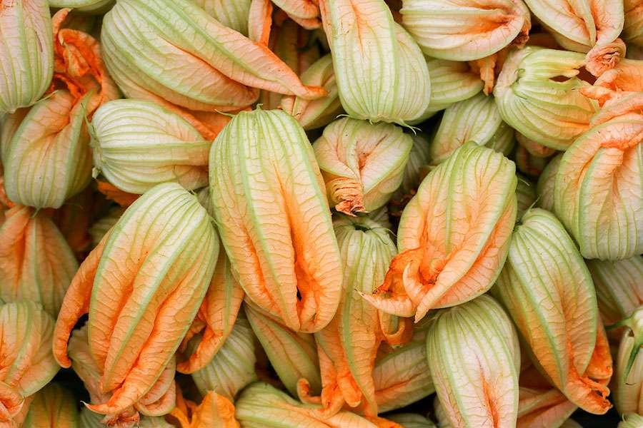 Les fleurs de courgettes se consomment aussi. © Antonio Jose Cespedes, Wikimedia commons, DP