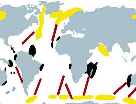 En jaune aires d'été, en noir aires d'hiver. Les traits indiquent les trajets approximatifs des cétacés à fanons. © DR