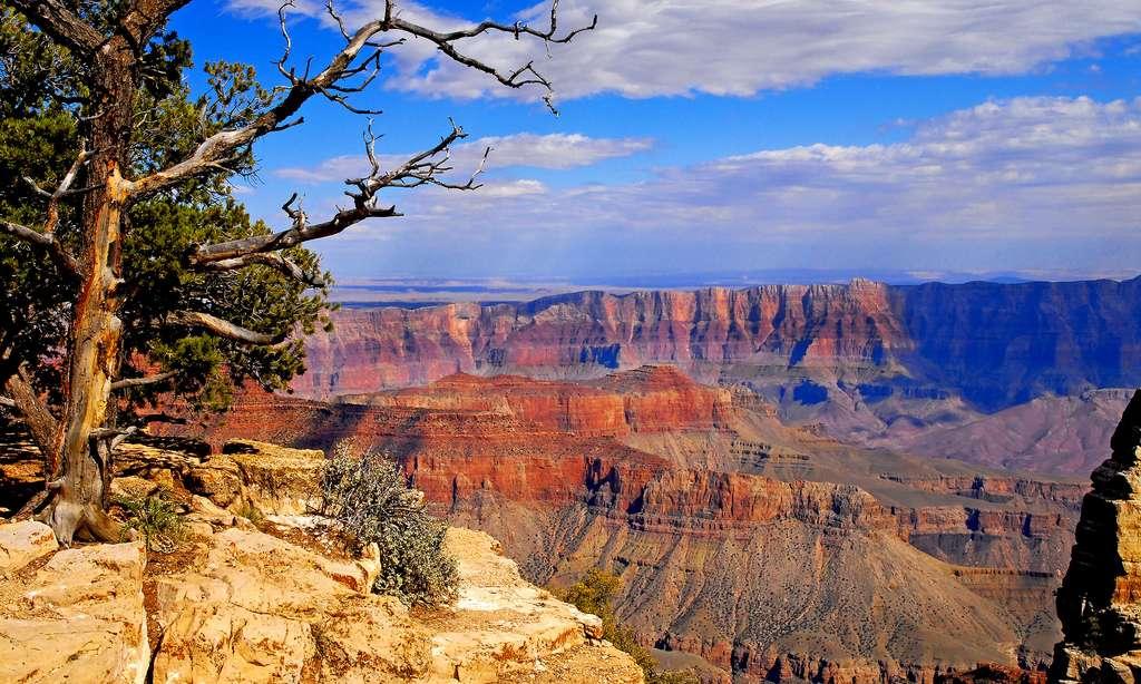 Vue du Grand canyon Lodge. © Antoine - Tous droits réservés