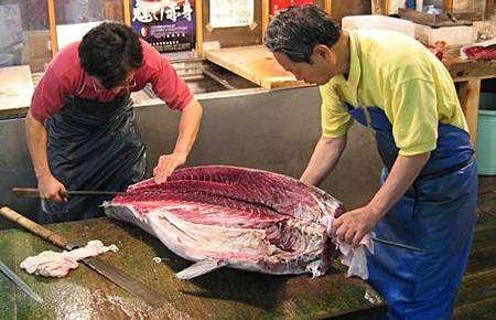 Thon rouge sur un marché japonais. Crédit : Derek Mawhinney