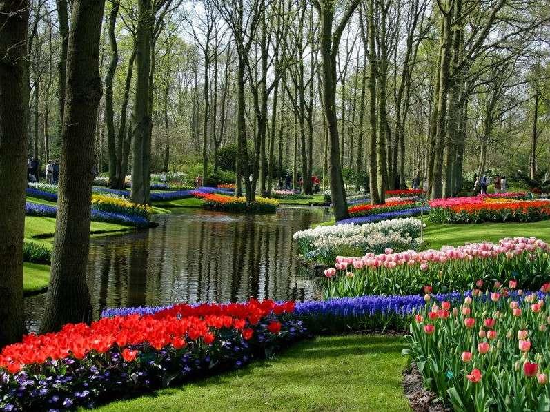 Le Keukenhof park et ses tulipes, en Hollande