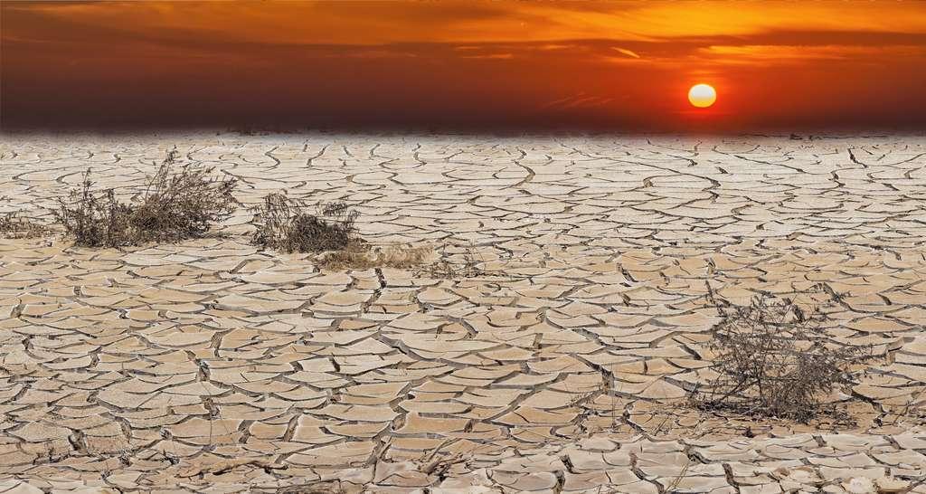 Les scientifiques tirent une fois de plus la sonnette d'alarme. Des mesures doivent être prises d'urgence pour limiter le réchauffement climatique. Sans quoi l'humanité devra faire face à une « souffrance indescriptible ». © sergei_fish13, Adobe Stock