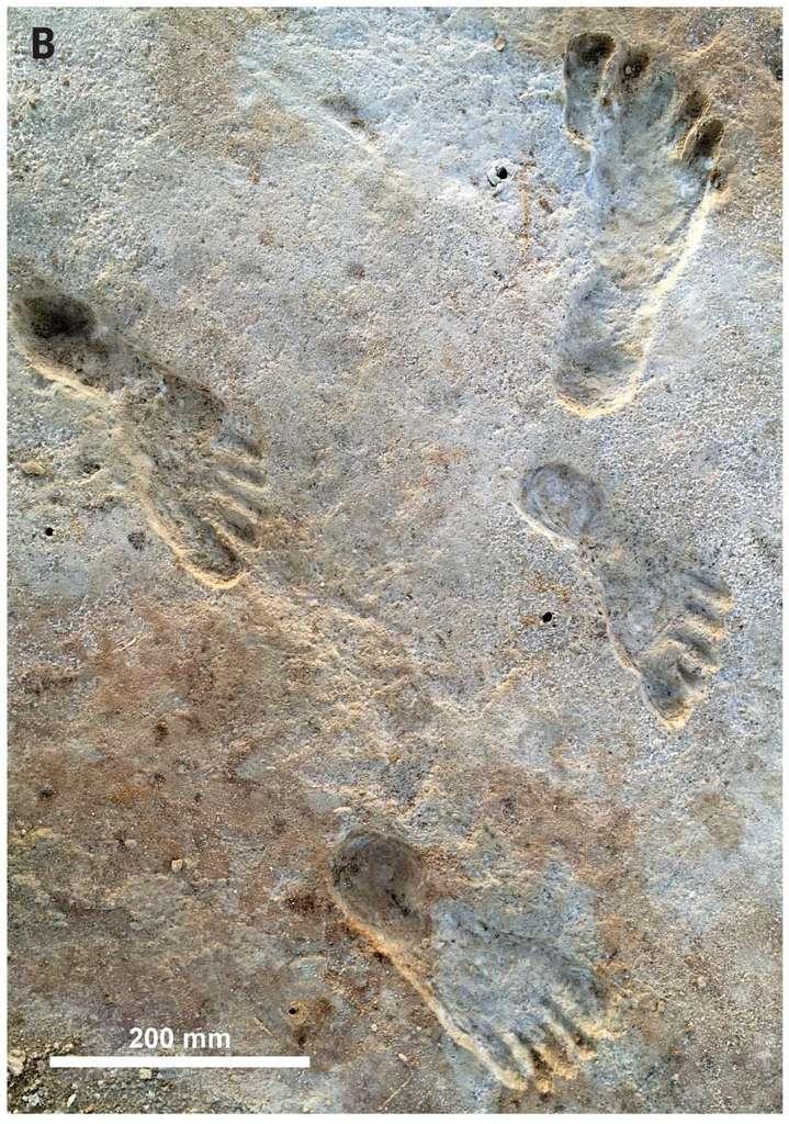 Des traces de pas humains ont été datées d'il y a au moins 23.000 ans, en Amérique du Nord. © Bennett et al, 2021