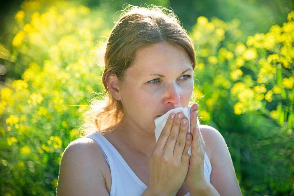 Les allergies au pollen provoquent des irritations du nez et des yeux. © andreusK, Adobe Stock