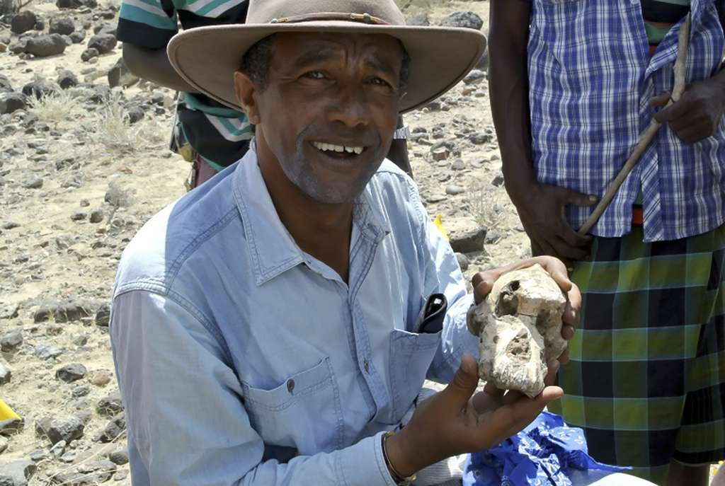 Yohannes Haile-Selassie, du Museum of Natural history de Cleveland, pose avec un fragment du crâne de l'Australopithèque découvert en Éthiopie, le 28 août 2019. © HO - Cleveland Museum of Natural history, AFP