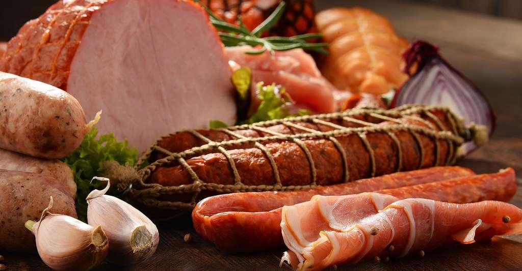 Charcuterie attention aux antibiotiques dans la viande. © Monticello - Shutterstock