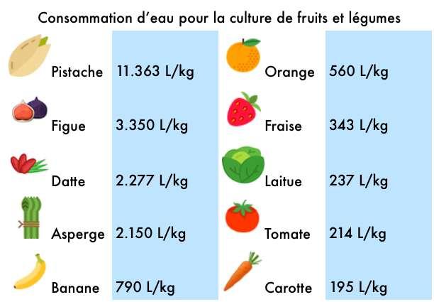 Consommation en eau de quelques fruits et légumes cultivés. Source : M. M. Mekonnen and A. Y. Hoekstra, Hydrol. Earth Syst. Sci., 2011. © Flaticon, Céline Deluzarche, Futura