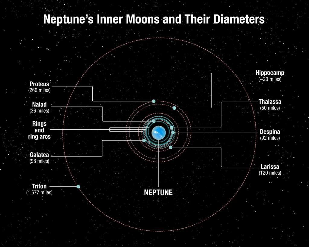 Ce schéma montre les orbites des lunes de Neptune. À l'exception de Triton, découverte en 1846, et d'Hippocampe, débusquée en 2013 avec le télescope Hubble, toutes les autres lunes ont été repérées en 1989 par la sonde Voyager 2 de la Nasa. Contrairement à celle des autres lunes de Neptune, l'orbite de Triton est rétrograde (parcourue dans le sens contraire de la rotation de Neptune). Cela suggère qu'il s'agit d'un objet de la ceinture de Kuiper capturé par la géante, et donc d'une cousine éloignée de Pluton. Les lunes intérieures se sont peut-être formées après la capture de Triton, il y a plusieurs milliards d'années. Les tailles sont en milles et un mille vaut environ 1,6 km. © A. Feild, Space Telescope Science Institute, Nasa, Esa