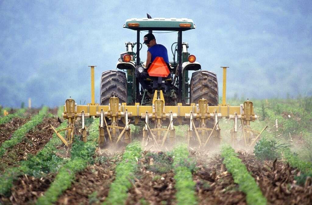 Que faire pour une agriculture saine ? PublicDomainPictures, Pixabay, DP