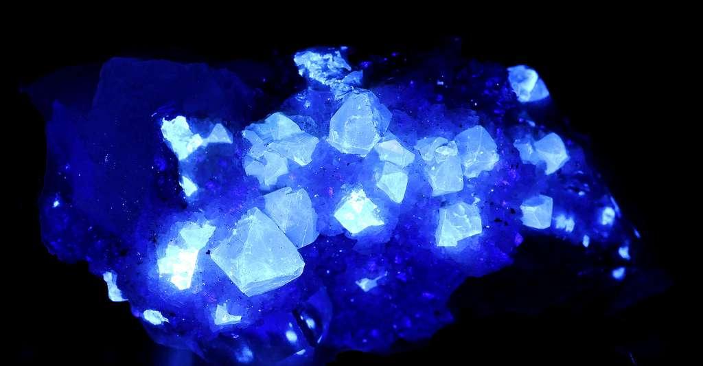 Comment fonctionnent la phosphorescence et la fluorescence chez les minéraux ? Ici, cristaux de scheelite sous ultraviolets (UV). © Parent Géry, CC0