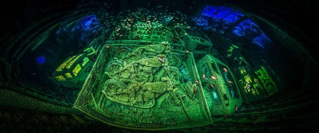 Drôle d'ambiance au fond de la mer Rouge. Figées dans cette épave, des motos datant de la seconde guerre mondiale. © Tobias Friedrich, UPY 2018