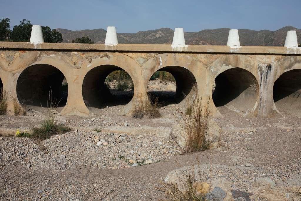 Les sécheresses vont s'accentuer dans plusieurs régions de France. © kaikutzki, Adobe Stock