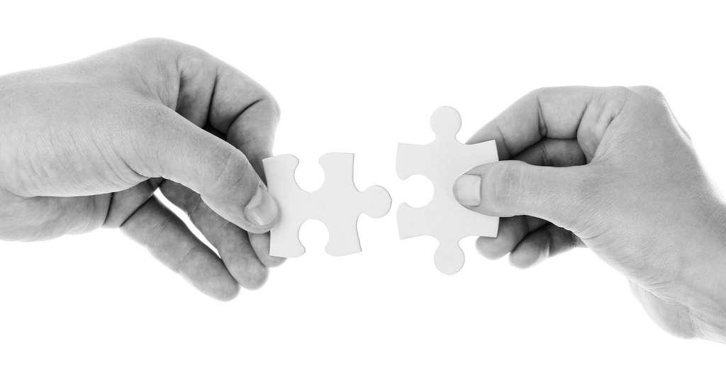 Main gauche ou main droite. Cette préférence est liée à la cognition. En moyenne, les gauchers présentent un hémisphère cérébral droit plus développé. Or cet hémisphère est le lieu notamment de processus tels que le raisonnement spatial. Certains gauchers jouissent également d'une connectivité améliorée entre leurs deux hémisphères cérébraux. Leur permettant probablement un meilleur traitement de l'information. © PublicDomainPictures, Pixabay, CC0 Public Domain