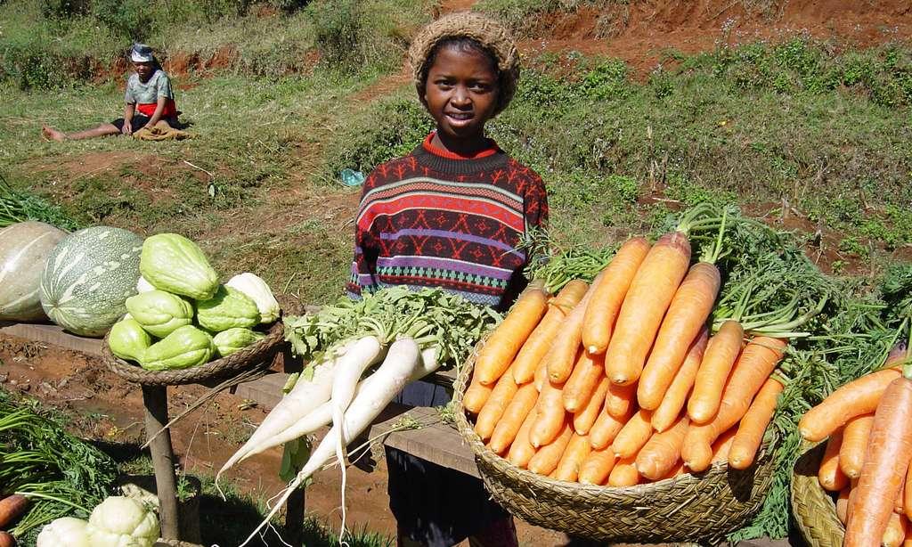 Marché aux légumes le long de la nationale 7, Madagascar