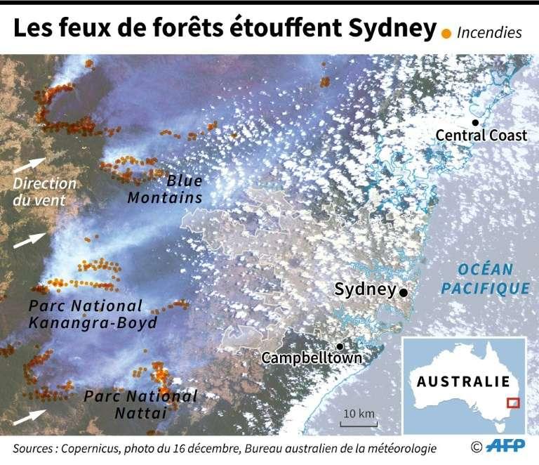 Les feux de forêts étouffent Sydney. © Patricio Arana, AFP