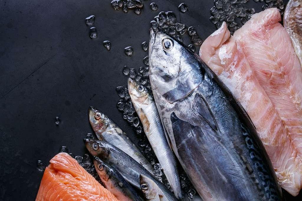 Manger du poisson gras ne permet pas de réduire les risques de maladies cardiovasculaires. © Natasha Breen, Fotolia