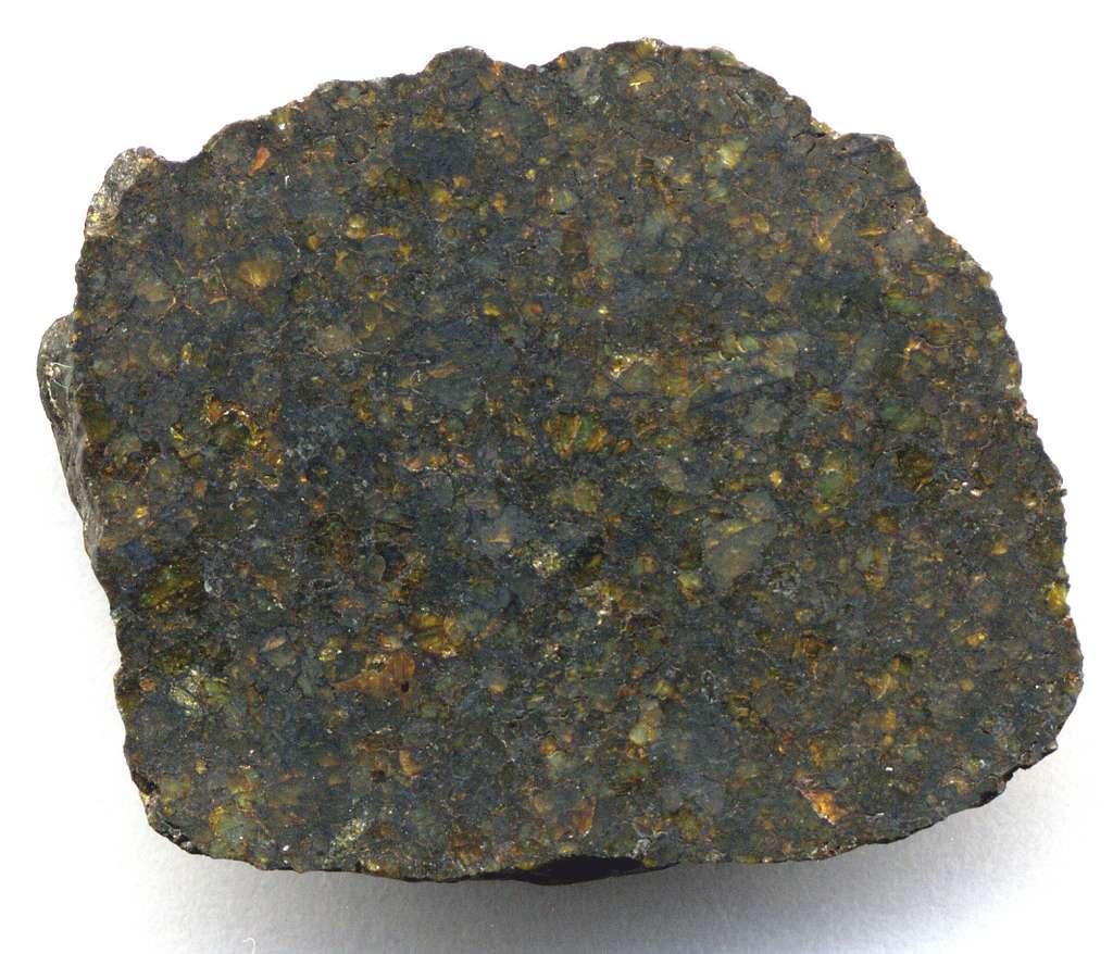 Fragment d'une uréilite, NWA 4231 (section polie, largeur = 2,9 cm). Les cristaux verdâtres ou orangés sont des olivines, et les cristaux très sombres des pyroxenes. © James St. John, Wikimedia Commons, CC by-sa 2.0