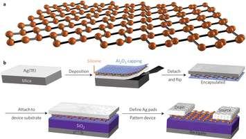 a. Structure en nid d'abeilles ondulé du silicène. b. Les étapes de fabrication du premier transistor à base de silicène. Le silicène se dépose sur une couche d'argent. Le tout est ensuite recouvert d'alumine (Al2O3). Puis, la structure est retournée et déposée sur du dioxyde de silicium (SiO2). Enfin, l'alumine est décapée sur la partie centrale. © Microélectronics Research Centre, université du Texas, Laboratorio MDM, IMM-CNR, Sensors and Electron Devices Directorate, US Army Research Laboratory