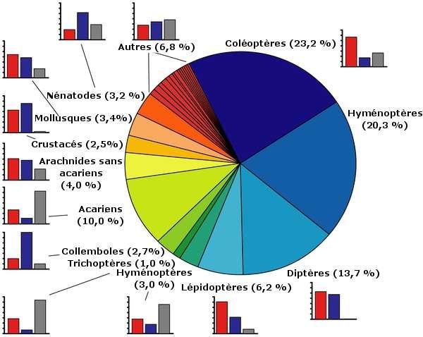 Près de 5.881 nouvelles espèces animales ont été découvertes en Europe entre 1998 et 2007. Elles se répartissent en différents groupes (dont l'importance est exprimée en pour cent) présentés dans ce graphique. Pour chaque taxon, les histogrammes indiquent le nombre d'espèces découvertes par des amateurs (rouge), des professionnels (mauve) ou des personnes dont le métier n'est pas renseigné (gris). © Fontaine et al. 2012, Plos One (adapté par Futura-Sciences)