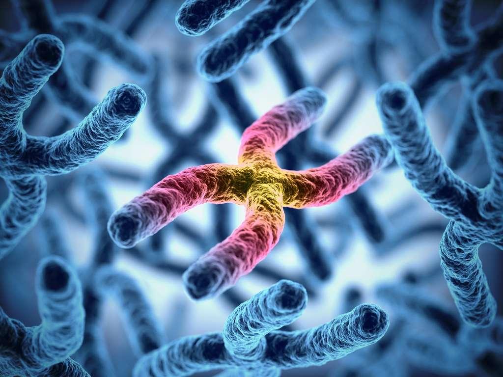 Une des pistes étudiées dans les essais cliniques est la thérapie génique. © koya979, Fotolia