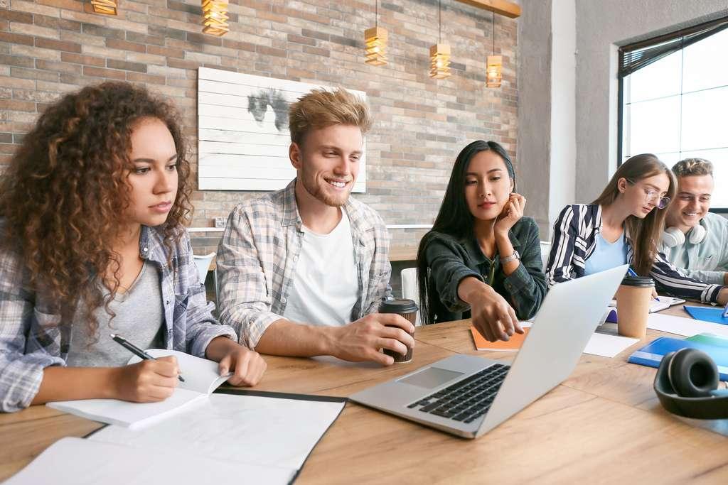 Les étudiants de mastère spécialisé alternent cours théoriques et travaux en groupe au cours de leur formation, leur permettant de devenir de véritables experts dans leur domaine d'activité. © Pixel-Shot, Adobe Stock