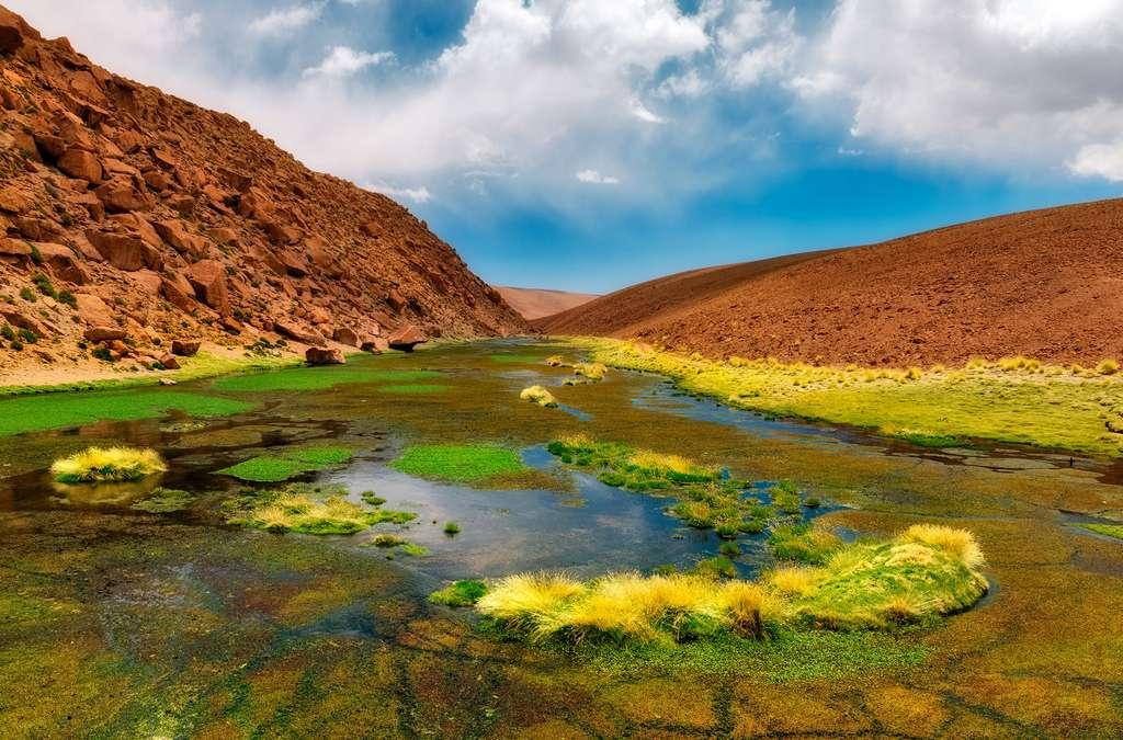 Une oasis à 3.000 mètres d'altitude