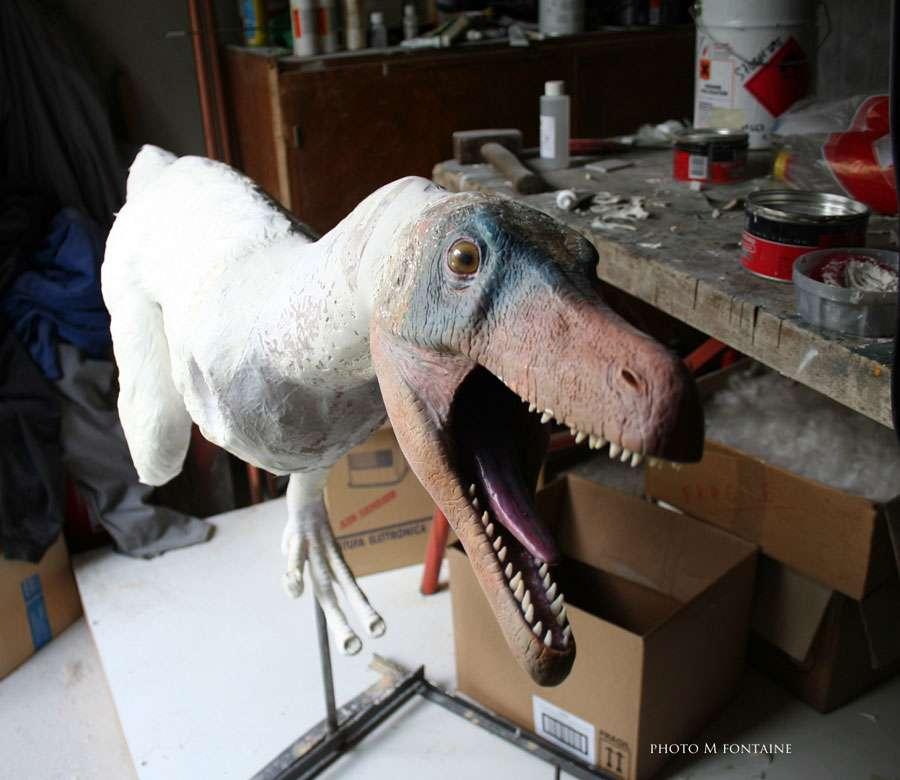 Variraptor en construction avec la tête