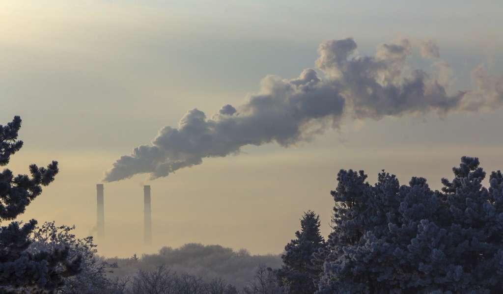 Graças a uma melhor compreensão da síntese de metano por bactérias metanogênicas, pesquisadores britânicos espero em breve para produzir metano - energia de modo - de CO2. © Animaflora, Fotolia