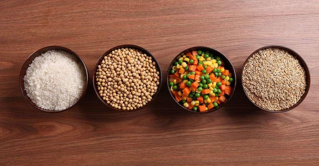 Création variétale de céréales. © Tangyi178, Pixabay, DP
