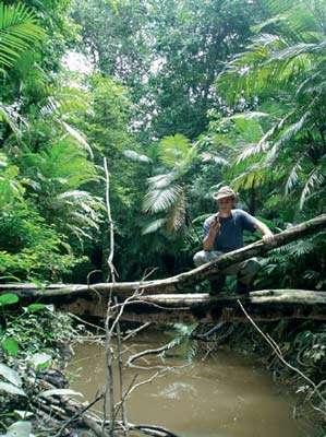 Après .... © www.deforestation-amazonie.org