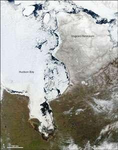 Péninsule d'Ungava en bordure de la baie d'Hudson. © www.earthobservatory.nasa.gov
