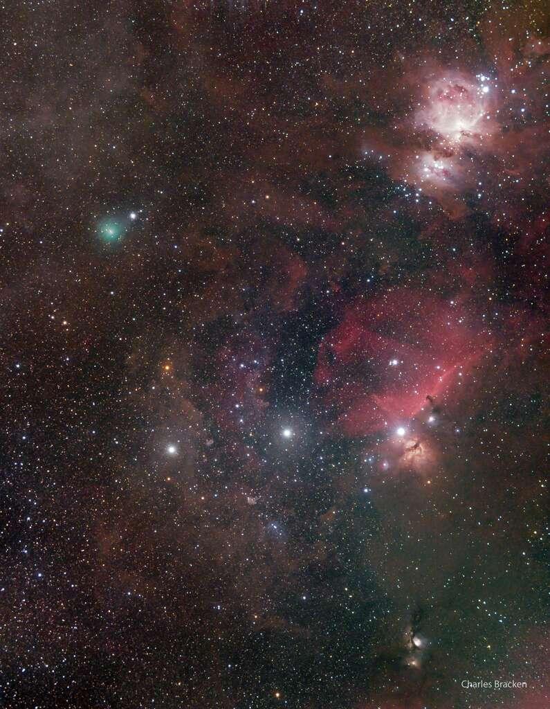 La comète Atlas dans Orion, sous la ceinture, le 8 novembre dernier. Vu de l'hémisphère sud, la constellation apparaît à l'envers. Le noyau cométaire, verdâtre (en haut à gauche), forme un triangle avec la nébuleuse d'Orion (en haut à droite) et l'ensemble de la nébuleuse de la Flamme et de la nébuleuse de la Tête de Cheval (centre droit). © Charles Bracken, Apod (Nasa)