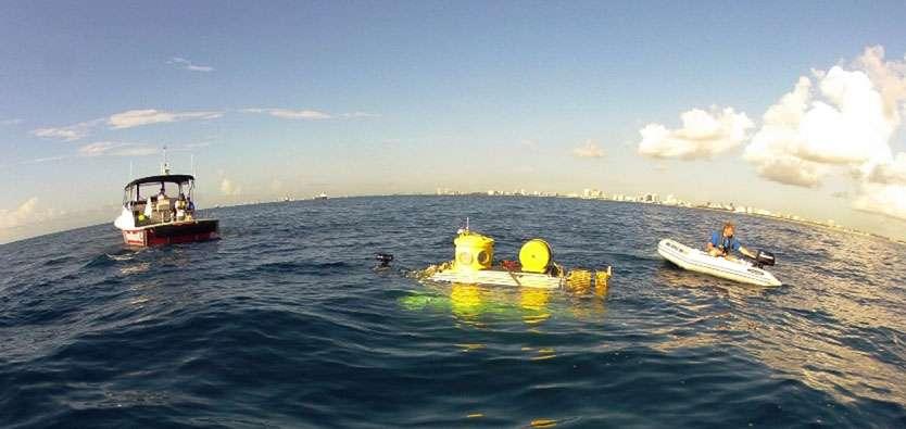 Le submersible Antipodes a été utilisé au large de Fort Lauderdale, en Floride, pour étudier l'invasion des rascasses volantes. © Oregon State University