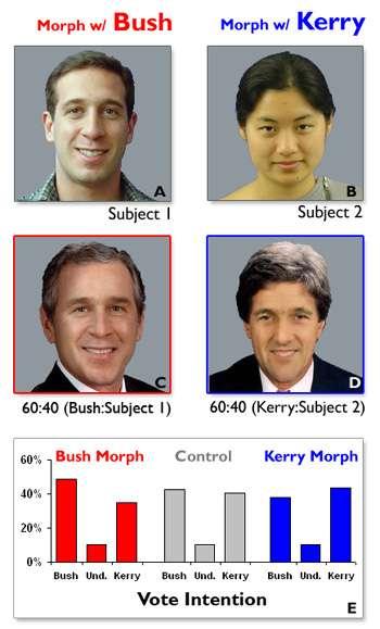 Les gens du VHIL ont procédé à des expériences. Ils ont pris les photos d'un panel d'expérimentateurs et ont morphé leur visage avec celui de John Kerry et George Bush (candidats à l'élection présidentielle américaine de 2004). La fusion des images était subtile ; aucun des sujets ne se rendit compte de l'opération. On leur présenta ensuite les images des deux candidats, l'une morphée avec leur visage, l'autre avec celui d'une personne inconnue. La courbe des intentions de vote et de la confiance montra des résultats significatifs : les gens préfèrent qu'on leur ressemble. © DR