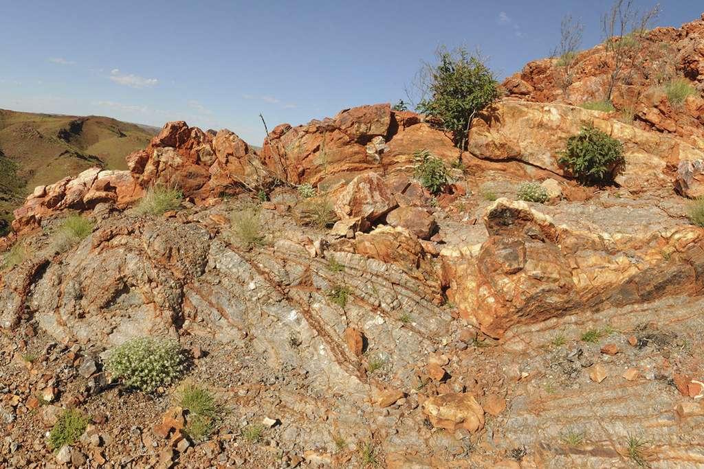 Les roches où se cachent peut-être les plus anciennes traces de vie sur les continents émergés. Elles se trouvent à Pilbara en Australie. © Kathy Campbell, University of New South Wales