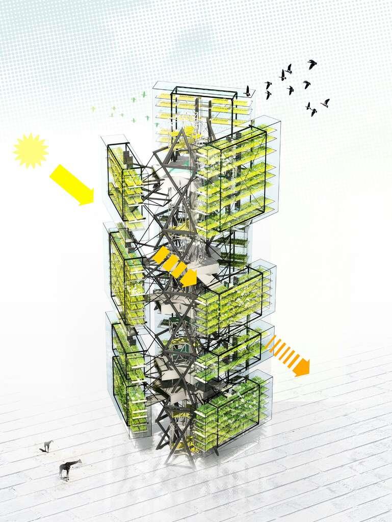 La ferme cactus, une exploitation agricole modulable