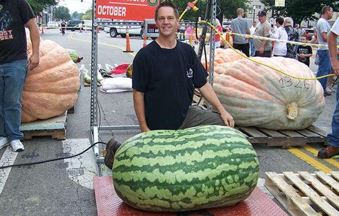 159 kg à la pesée. Record inégalé de la pastèque la plus lourde du monde. © Guinness World Records