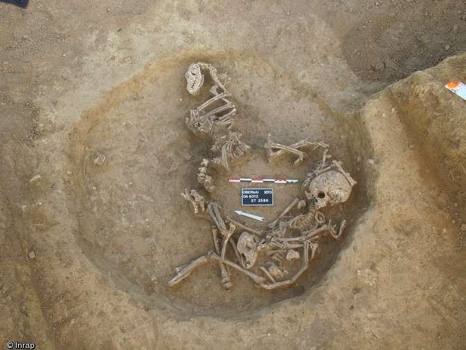 Dépôt de deux enfants et de plusieurs chiens au fond d'un silo, entre 450 et 350 avant notre ère. Ces restes ont été découverts à Obernai (Bas-Rhin) en 2013. © Nicolas Loew, Inrap
