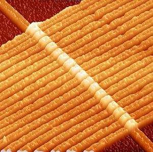 Image d'un prototype, obtenue par un microscope à force atomique par HP. Les 17 structures longilignes sont des connecteurs et 17 memristors se trouvent à leurs intersections avec un connecteur transversal. Chacun d'eux est large de 50 nanomètres, ce qui représente environ 150 atomes. © J.-J. Yang, HP Labs/GNU