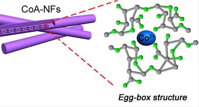 Grâce à des extraits d'algues brunes, des scientifiques ont créé des nanofibres présentant une structure en forme de boite à œufs sur laquelle la figure ci-dessus propose un zoom. © American Chemical Society