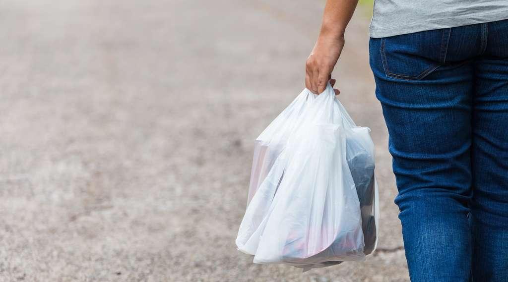 Le ministre japonais de l'Industrie, Hiroshige Seko, a affirmé que le Japon allait demander aux entreprises de facturer les sacs en plastique jetables, une mesure déjà adoptée par plusieurs pays. Certains, dont la France, les ont tout simplement interdits. © patpitchaya, Fotolia
