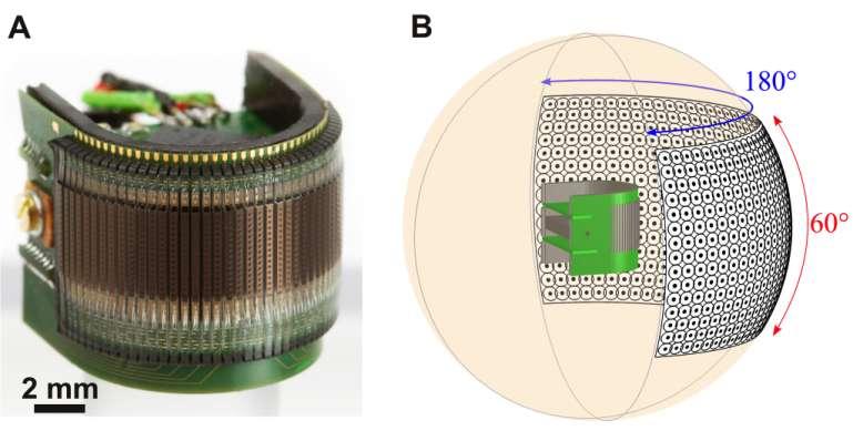 Parfaitement alignés, les 180 photorécepteurs et leurs microlentilles reposent sur un circuit imprimé souple. Épais de moins d'un millimètre, l'ensemble est plaqué sur un semi-cylindre de 2,2 cm3 (photo A) pour offrir un angle de vision horizontal de 180° et de 60° verticalement (illustration B). Le tout pèse seulement 1,75 g et ne consomme que 0,9 watt. © Curvace