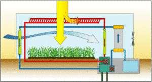 Cliquer pour agrandir. Fonctionnement d'une serre à eau de mer : l'air qui pénètre dans la serre (en bleu) est d'abord rafraîchie et humidifiée par l'eau de mer du premier évaporateur. Cet air crée un microclimat favorable aux cultures. L'air qui quitte la serre passe par un deuxième évaporateur dont l'eau de mer a été chauffée par le soleil (circuit rouge) pour devenir encore plus chaud et plus humide. Au contact de tubes remplis d'eau de mer froide, il produira de l'eau douce par condensation (zone gris clair à droite). © Seawater Greenhouse