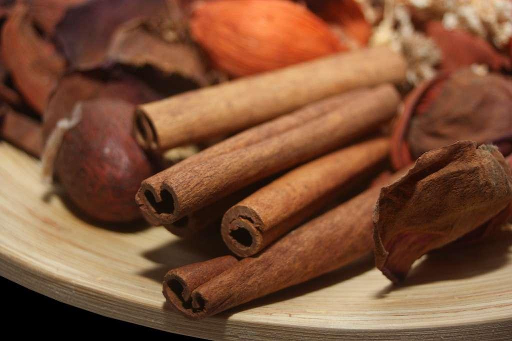 La cannelle est à la fois une épice et une plante médicinale. © alf photo, Fotolia