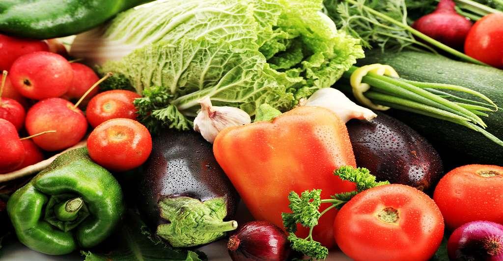 Une alimentation équilibrée est essentielle lorsqu'on est atteint de sclérose en plaques. © Kiselev Andrey Valerevich, Shutterstock