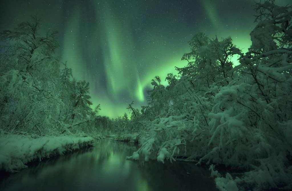 Sublimes aurores au bord de la rivière Lomaas, en Norvège