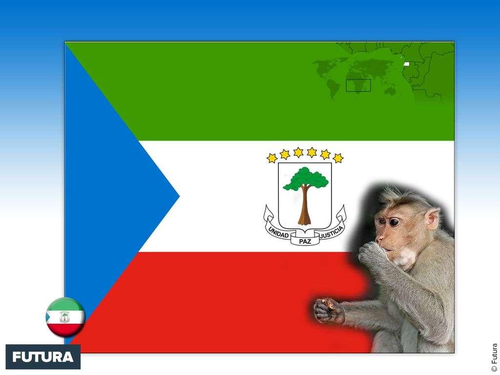 Drapeau : Guinée équatoriale